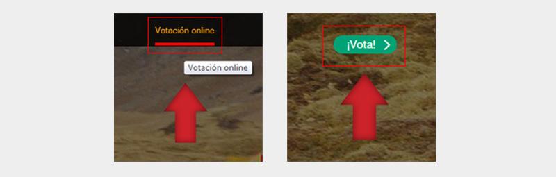 Vota_6